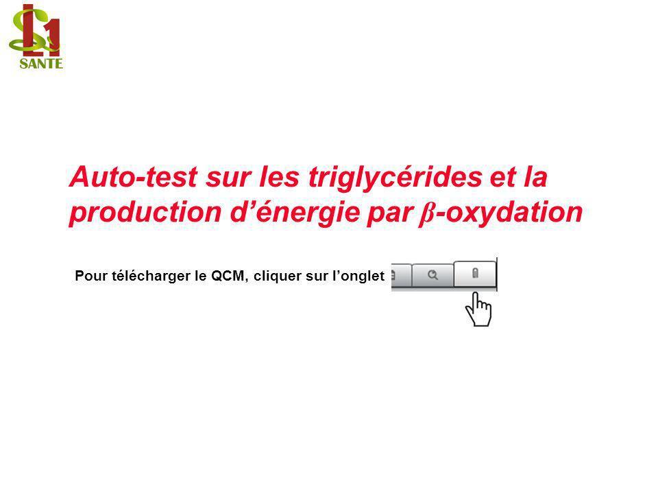 Auto-test sur les triglycérides et la production d'énergie par β-oxydation