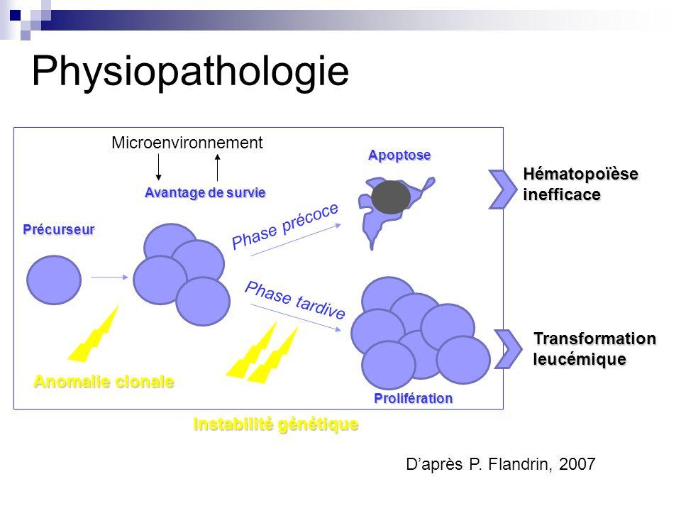 Physiopathologie Microenvironnement Hématopoïèse inefficace