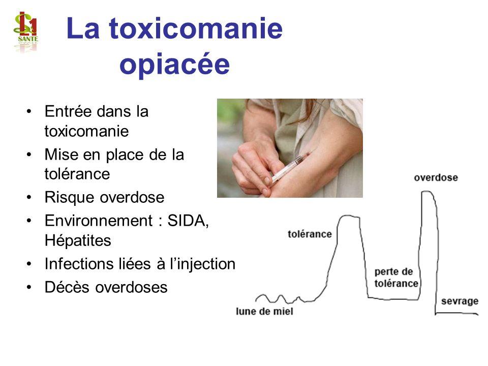 La toxicomanie opiacée