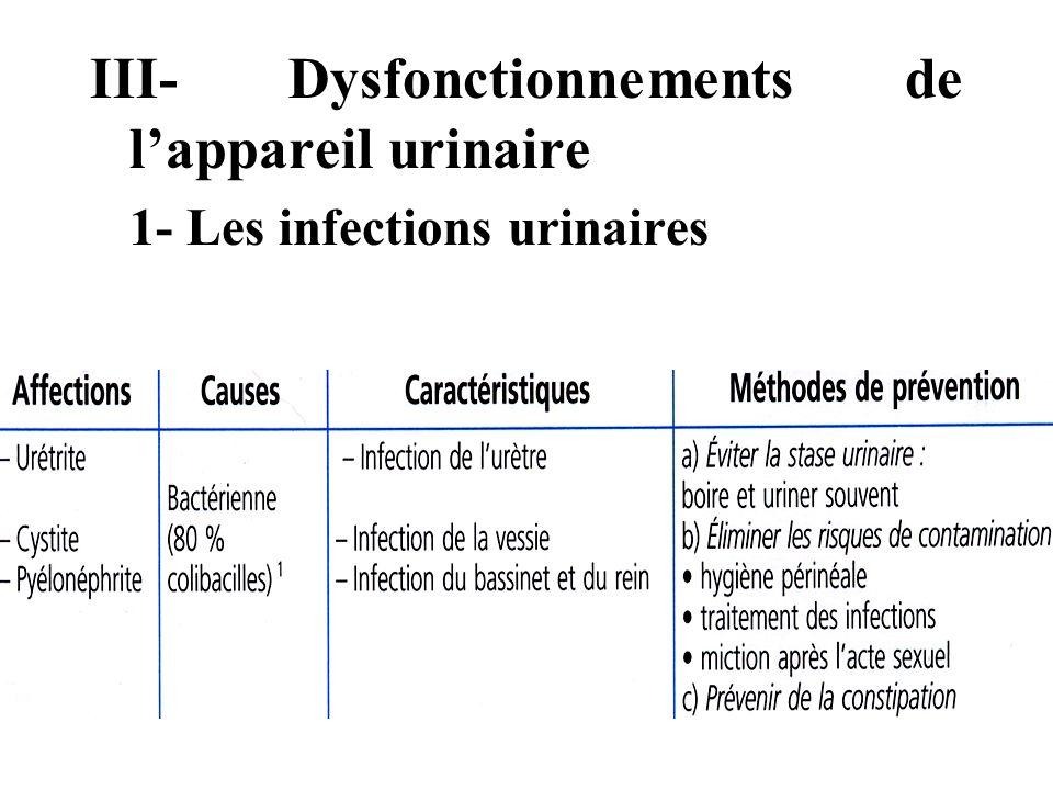 III- Dysfonctionnements de l'appareil urinaire