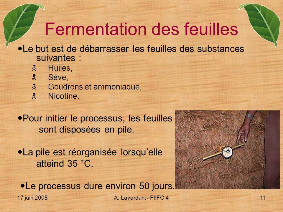 Fermentation des feuilles
