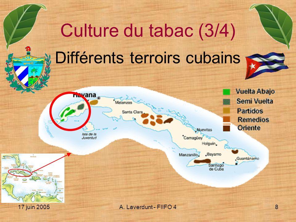 Différents terroirs cubains