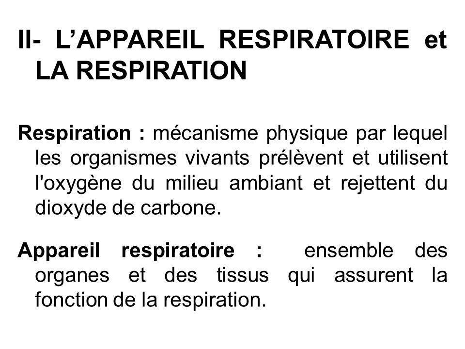 II- L'APPAREIL RESPIRATOIRE et LA RESPIRATION