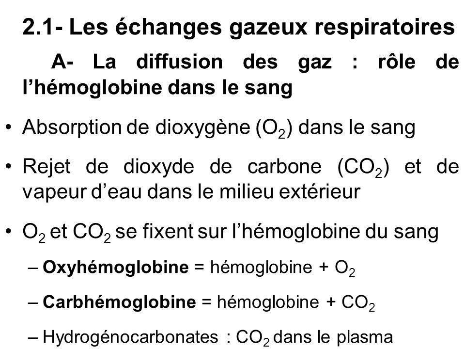 2.1- Les échanges gazeux respiratoires