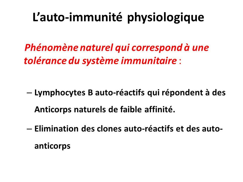 L'auto-immunité physiologique
