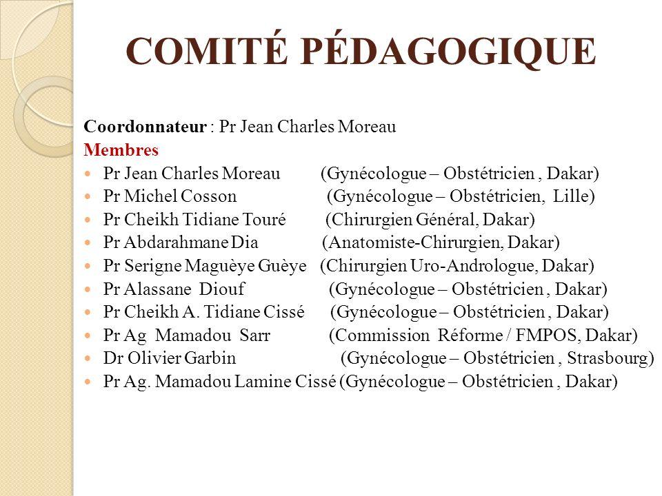 COMITÉ PÉDAGOGIQUE Coordonnateur : Pr Jean Charles Moreau Membres