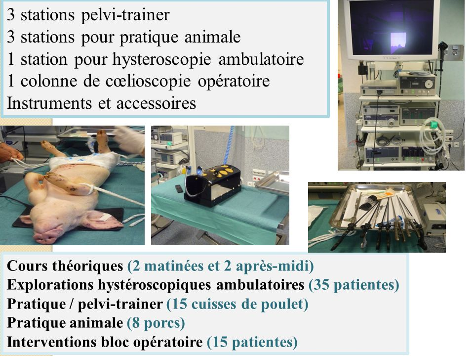 3 stations pelvi-trainer 3 stations pour pratique animale