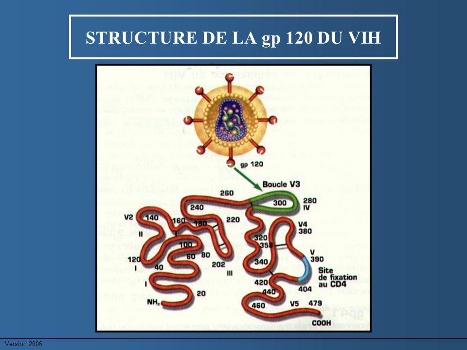 STRUCTURE DE LA gp 120 DU VIH