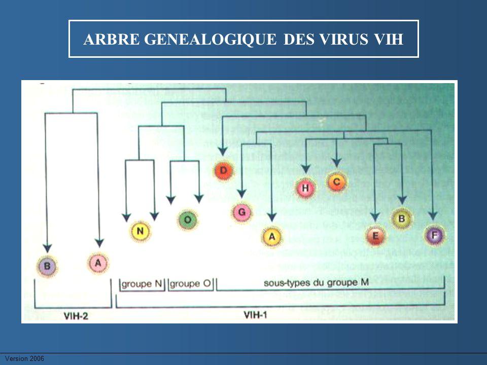 ARBRE GENEALOGIQUE DES VIRUS VIH