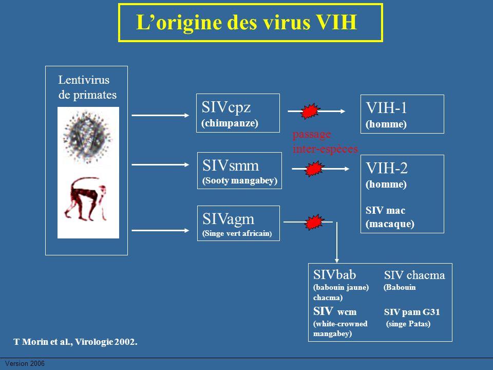 L'origine des virus VIH