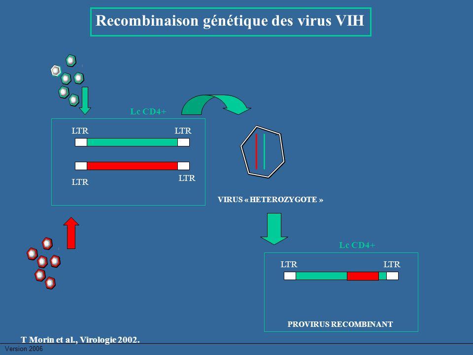 Recombinaison génétique des virus VIH