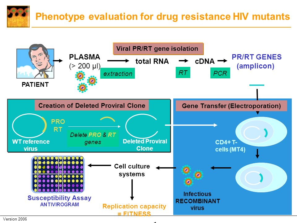 Phenotype evaluation for drug resistance HIV mutants