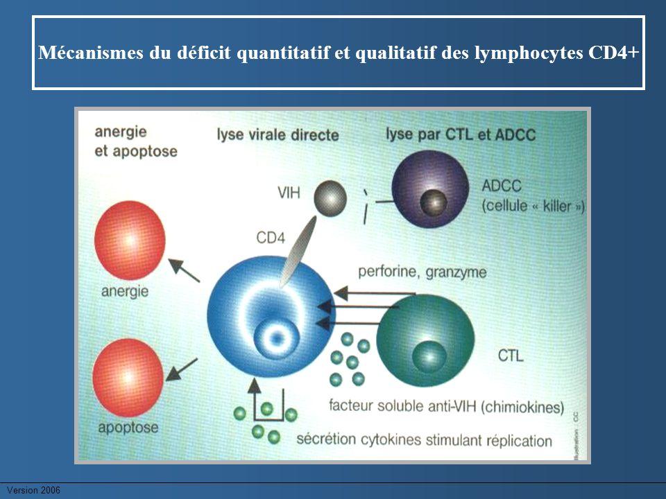 Mécanismes du déficit quantitatif et qualitatif des lymphocytes CD4+