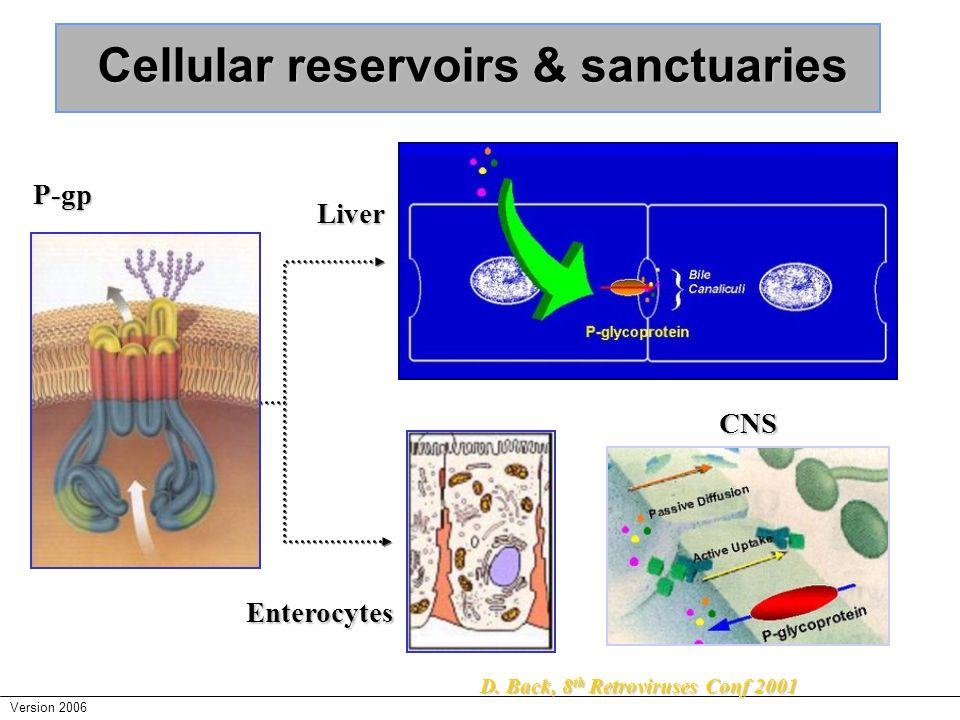 Cellular reservoirs & sanctuaries