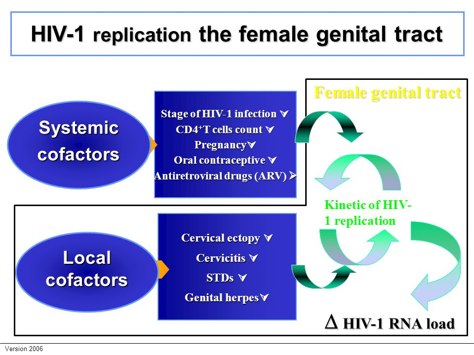 HIV-1 replication the female genital tract