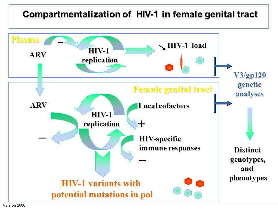 – – + Compartmentalization of HIV-1 in female genital tract Plasma –