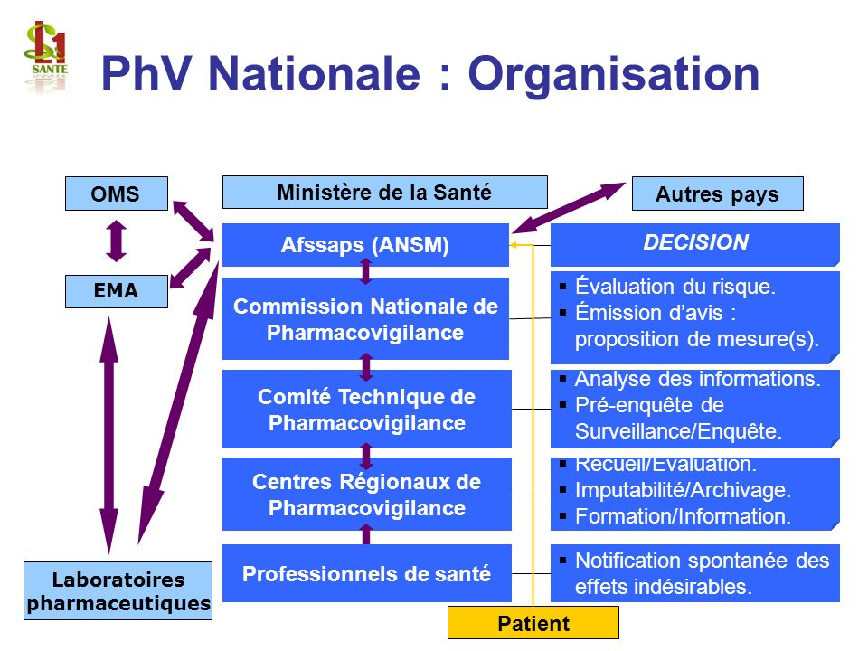 PhV Nationale : Organisation