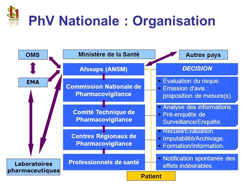PhV Nationale : Organisation