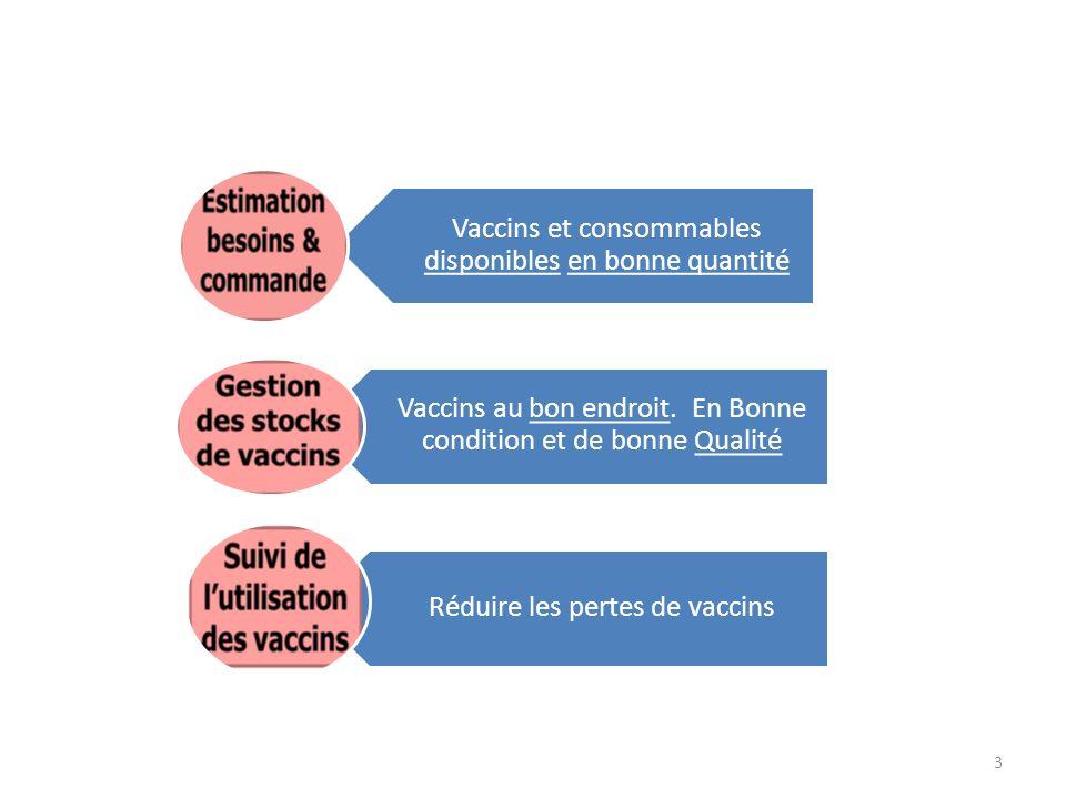 Vaccins et consommables disponibles en bonne quantité