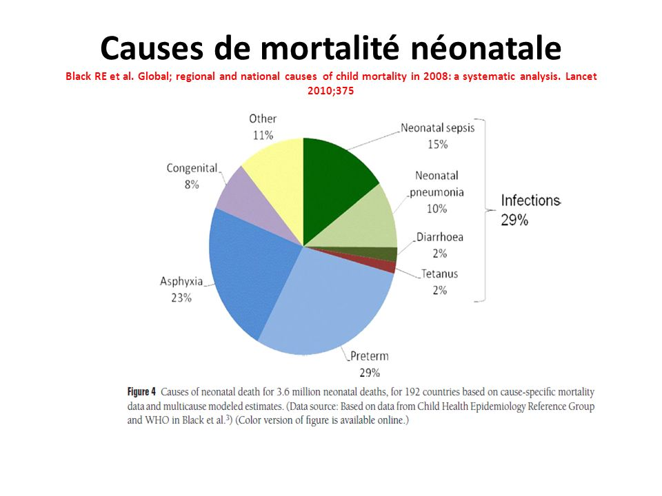Causes de mortalité néonatale Black RE et al