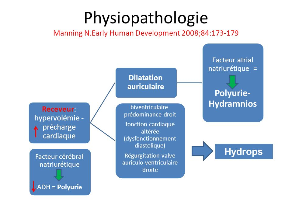 Physiopathologie Manning N.Early Human Development 2008;84:173-179