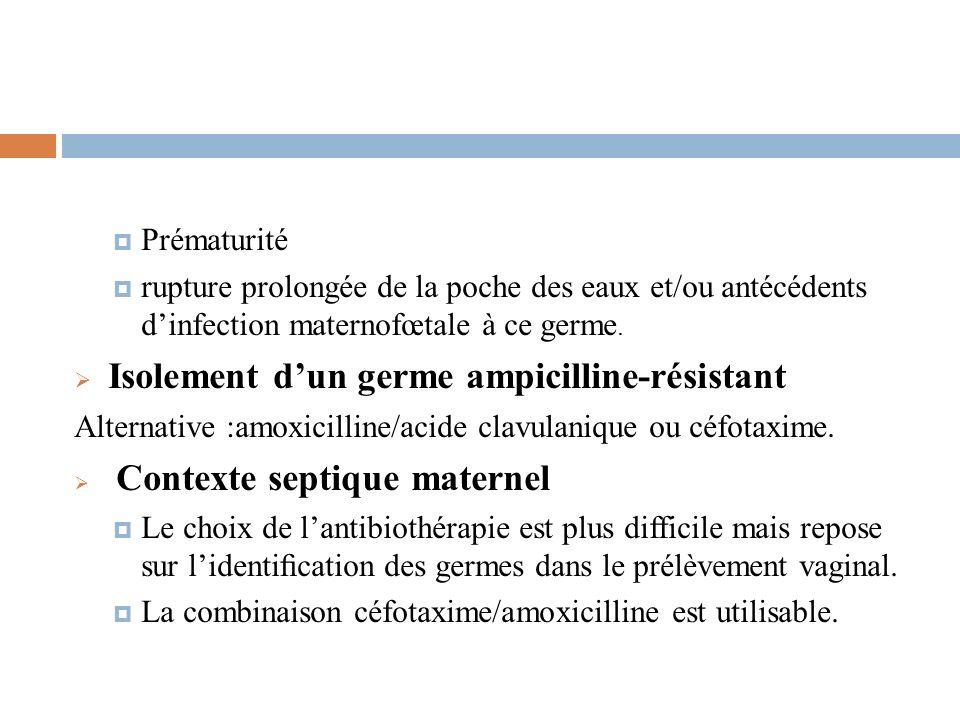 Isolement d'un germe ampicilline-résistant