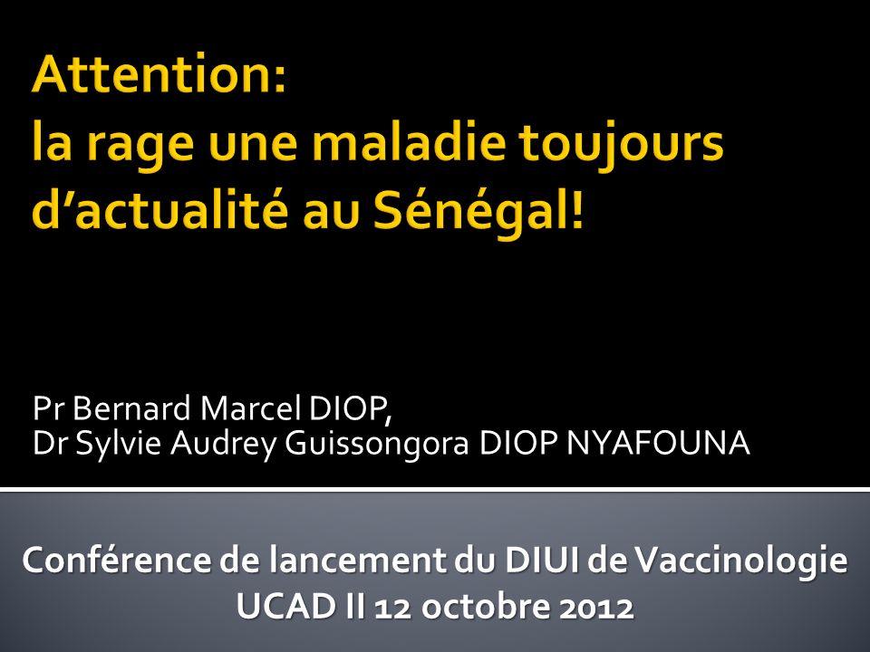 Attention: la rage une maladie toujours d'actualité au Sénégal!