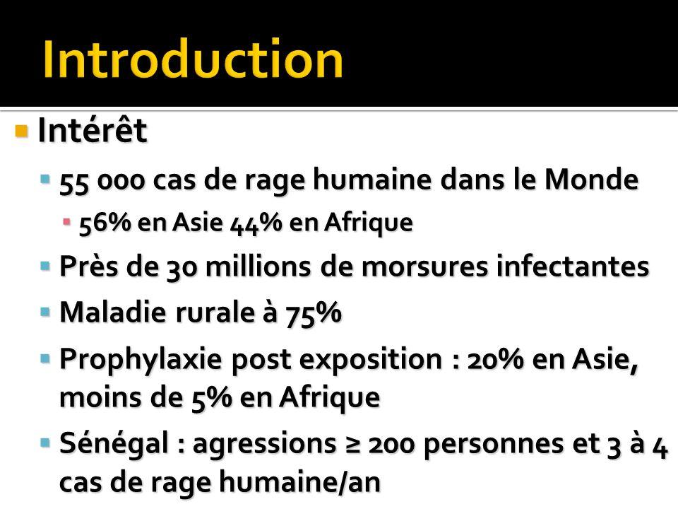 Introduction Intérêt 55 000 cas de rage humaine dans le Monde