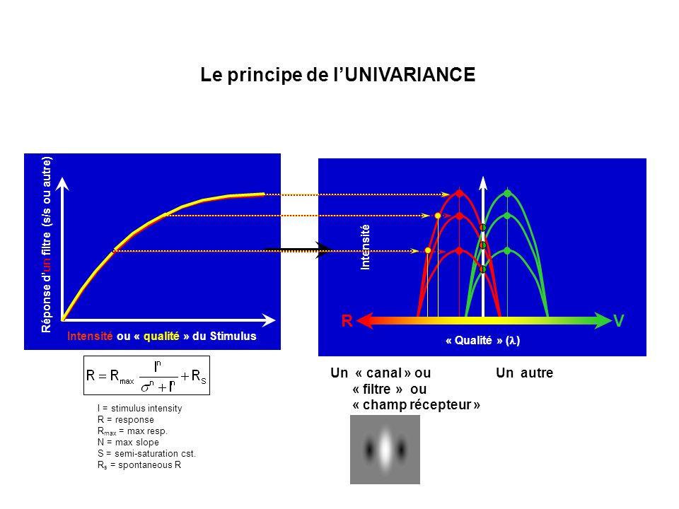 Le principe de l'UNIVARIANCE