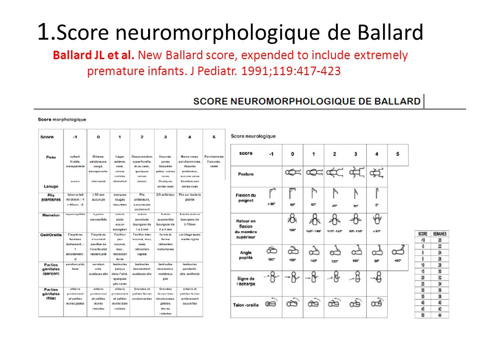 1. Score neuromorphologique de Ballard Ballard JL et al
