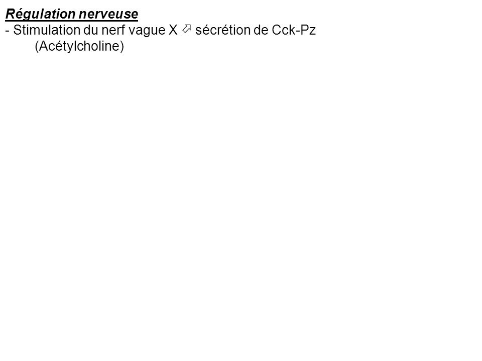 Régulation nerveuse - Stimulation du nerf vague X  sécrétion de Cck-Pz (Acétylcholine)