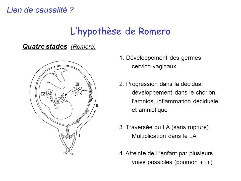 L'hypothèse de Romero Lien de causalité Quatre stades (Romero)