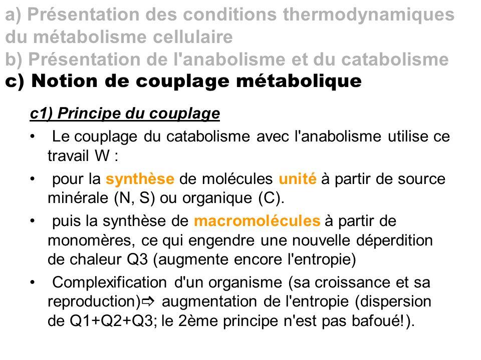 b) Présentation de l anabolisme et du catabolisme