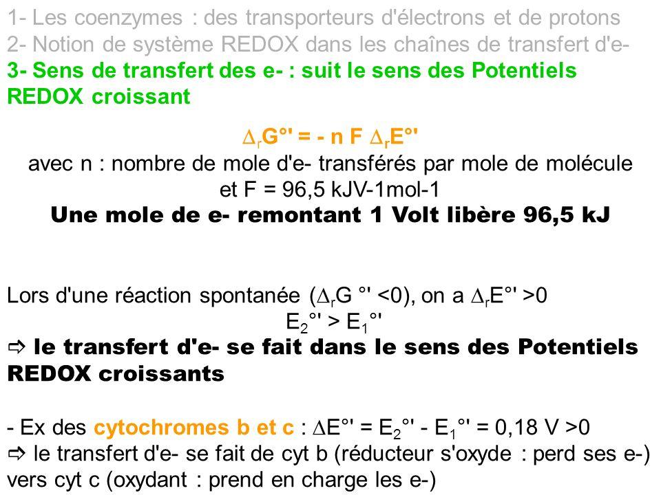 1- Les coenzymes : des transporteurs d électrons et de protons