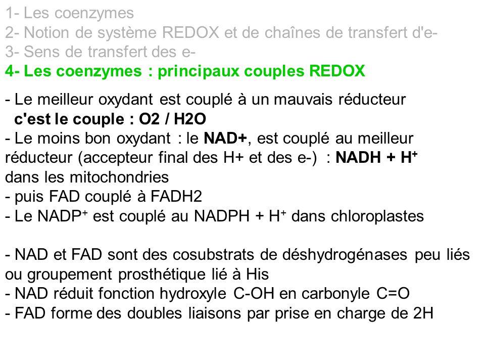 1- Les coenzymes 2- Notion de système REDOX et de chaînes de transfert d e- 3- Sens de transfert des e-