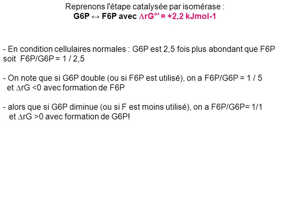 G6P ↔ F6P avec DrG° = +2,2 kJmol-1