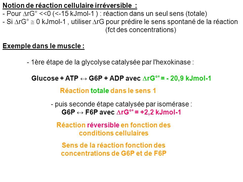 Notion de réaction cellulaire irréversible :
