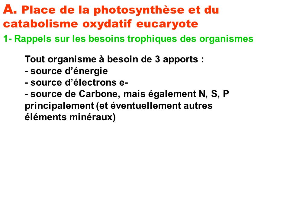 A. Place de la photosynthèse et du catabolisme oxydatif eucaryote