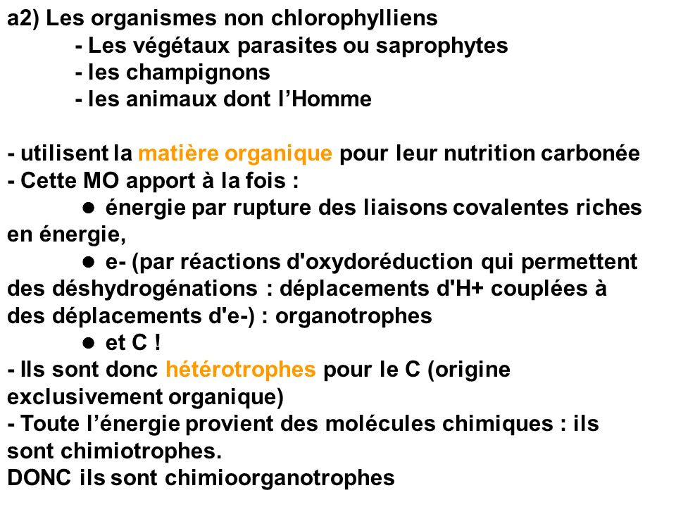 a2) Les organismes non chlorophylliens