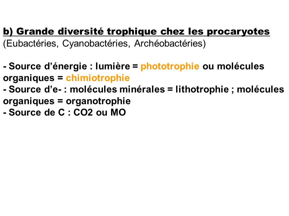 b) Grande diversité trophique chez les procaryotes (Eubactéries, Cyanobactéries, Archéobactéries)