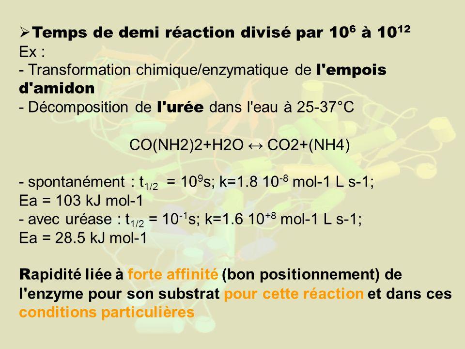Temps de demi réaction divisé par 106 à 1012