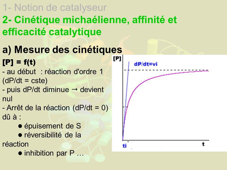 2- Cinétique michaélienne, affinité et efficacité catalytique