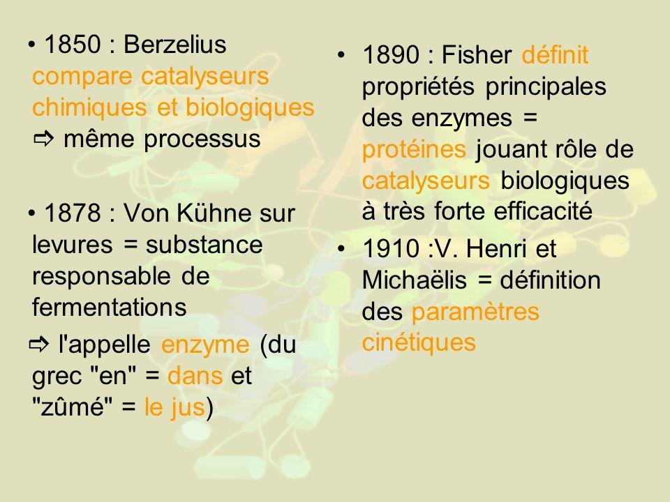 1850 : Berzelius compare catalyseurs chimiques et biologiques  même processus