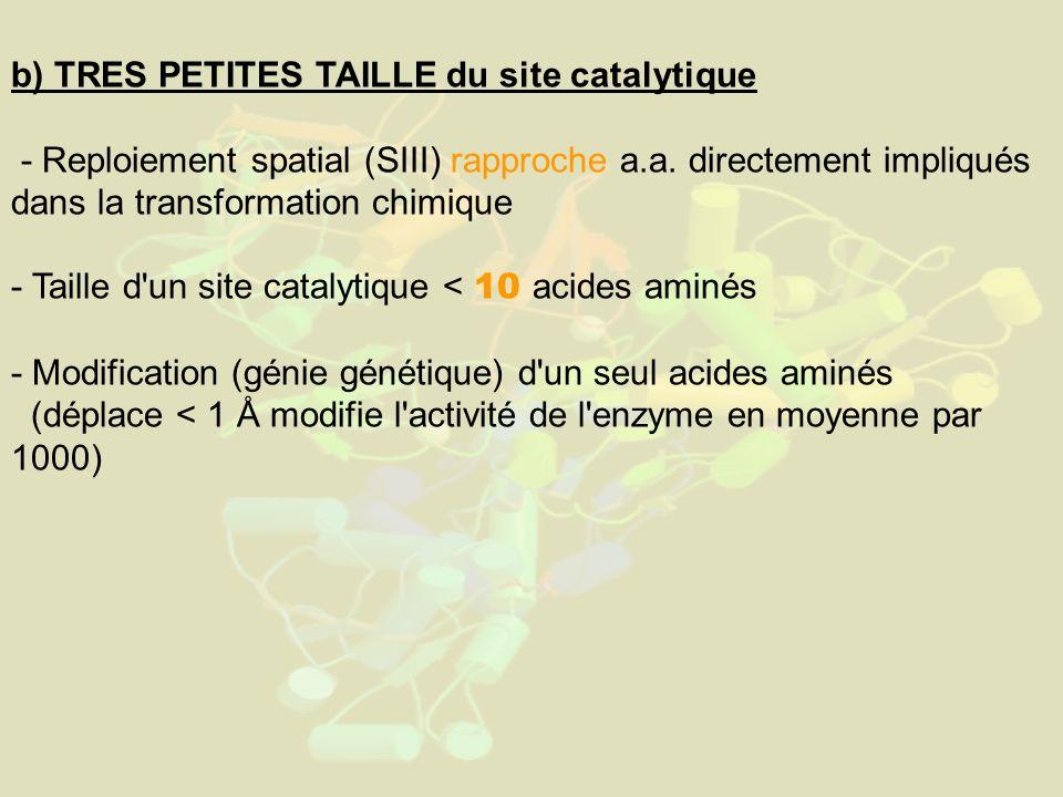 b) TRES PETITES TAILLE du site catalytique