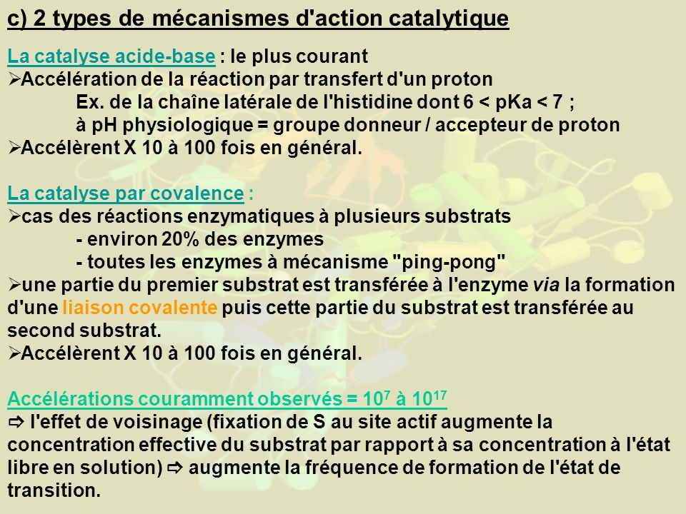 c) 2 types de mécanismes d action catalytique