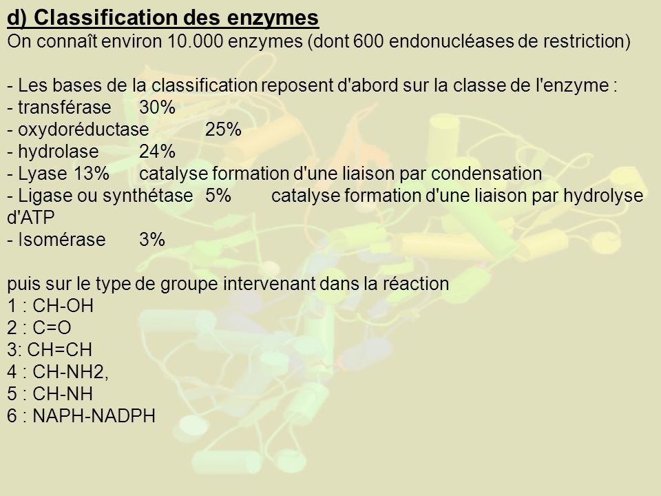d) Classification des enzymes