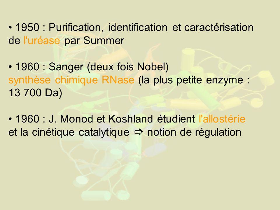 1950 : Purification, identification et caractérisation de l uréase par Summer