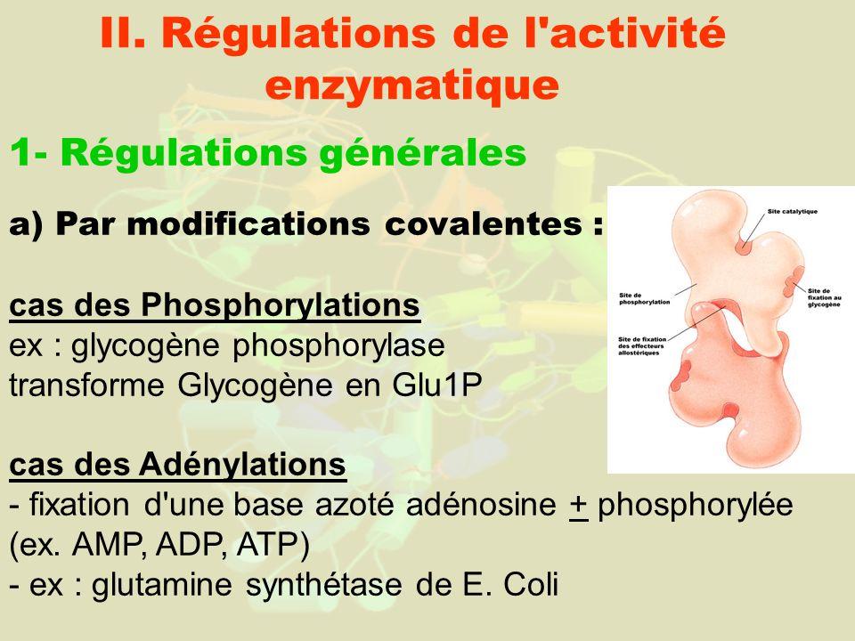 II. Régulations de l activité enzymatique