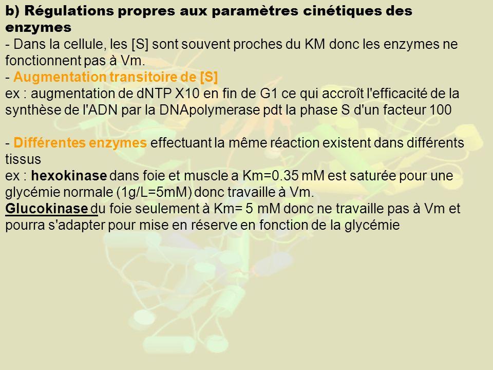 b) Régulations propres aux paramètres cinétiques des enzymes