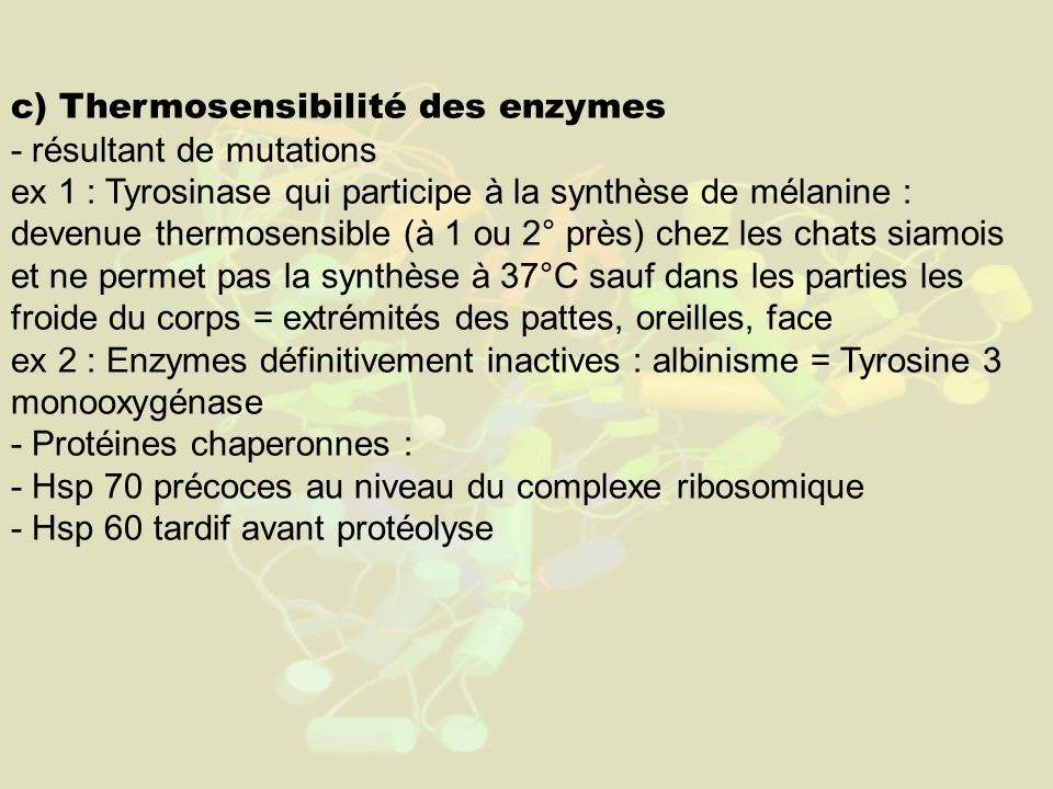 c) Thermosensibilité des enzymes